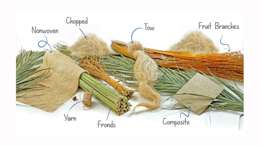 استخراج فیبر از نخل خرما - فیبر, صنعت نساجی, الیاف گیاهی, الیاف طبیعی
